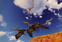 صورة علماء بريطانيون يكتشفون نوعًا من الديناصورات قادرة على الطيران منذ الولادة